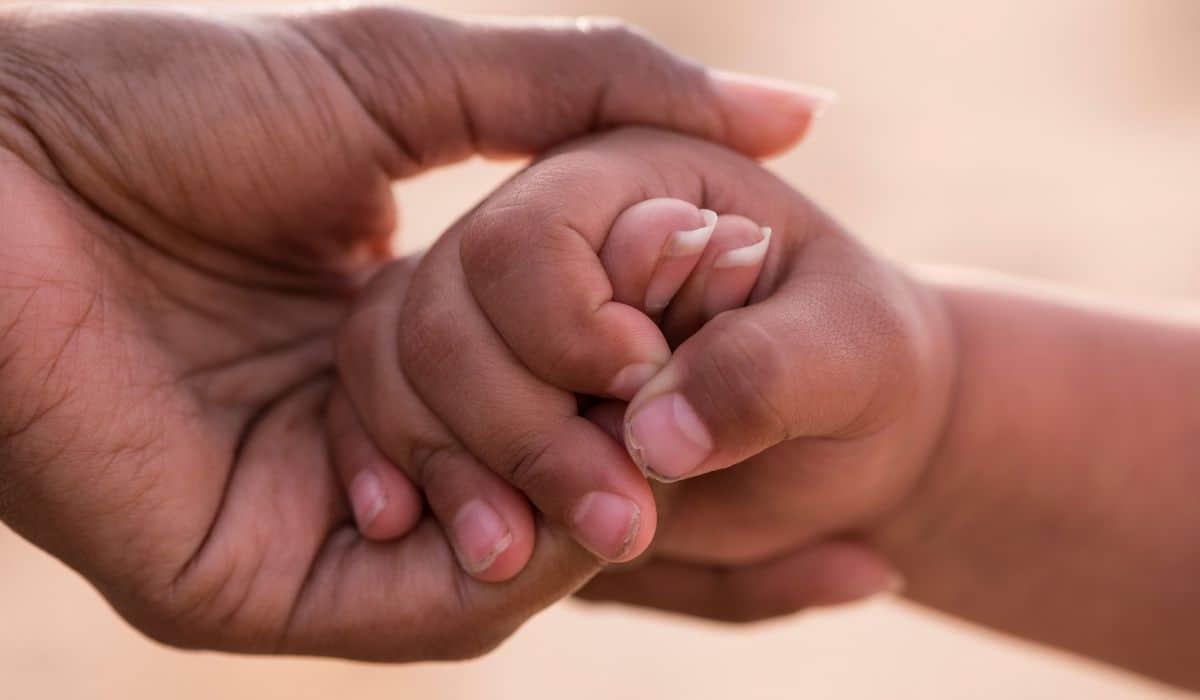 O que é a Lei de Alienação Parental (LAP)?
